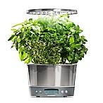 AeroGarden® Harvest Elite 360 Garden System in Stainless Steel