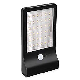 Link2Home Outdoor 36-Light LED Motion-Sensing Solar Flood Light in Black