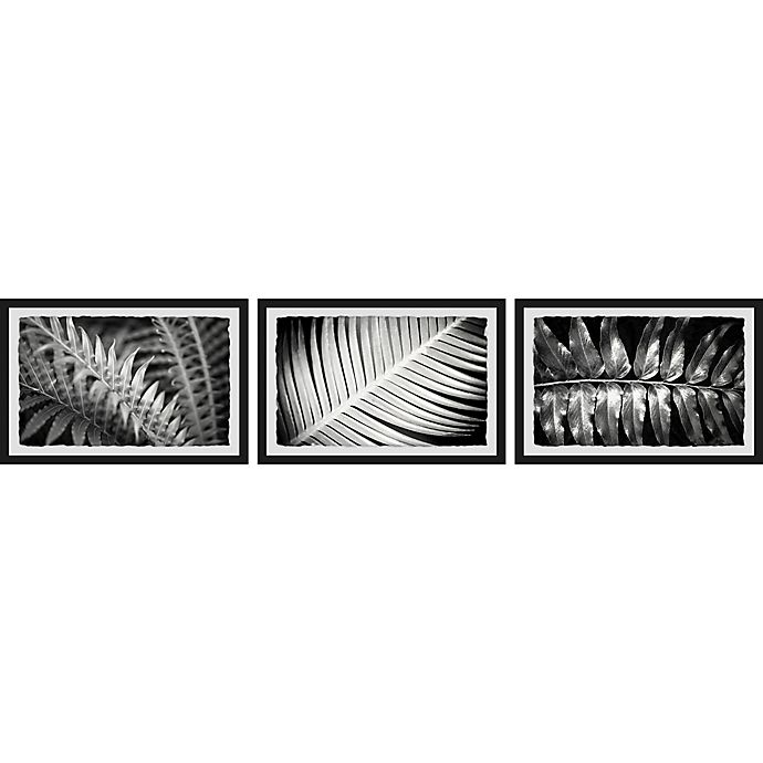 Alternate image 1 for Marmont Hill Leaf Types 72-Inch x 16-Inch Framed Triptych Wall Art