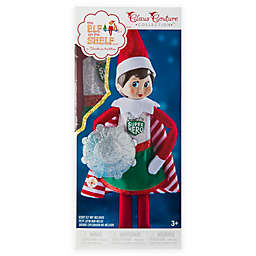 The Elf On The Shelf Bed Bath Beyond
