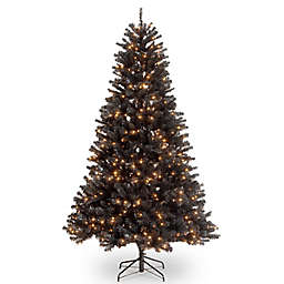 National Tree Company 6.5' North Valley Black Spruce Christmas Tree with Clear Lights