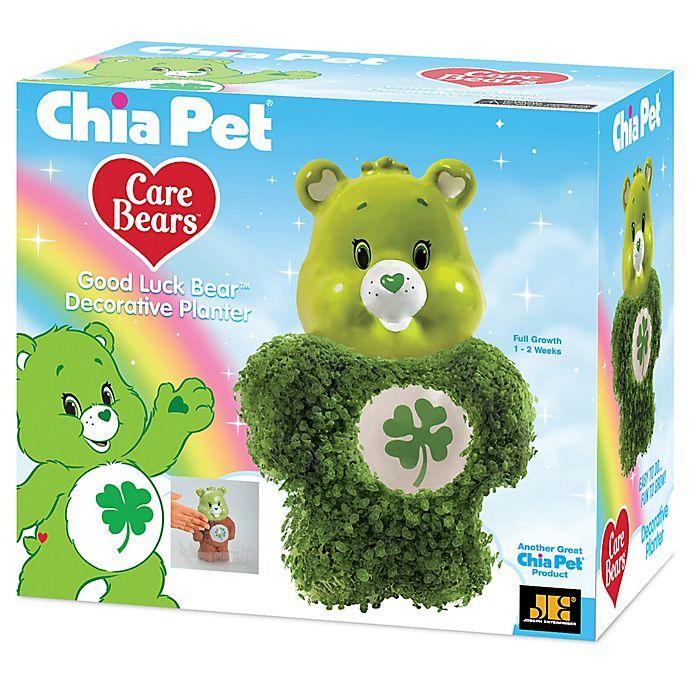 Chia Pet Care Bears Handmade Pottery Planter Buybuy Baby