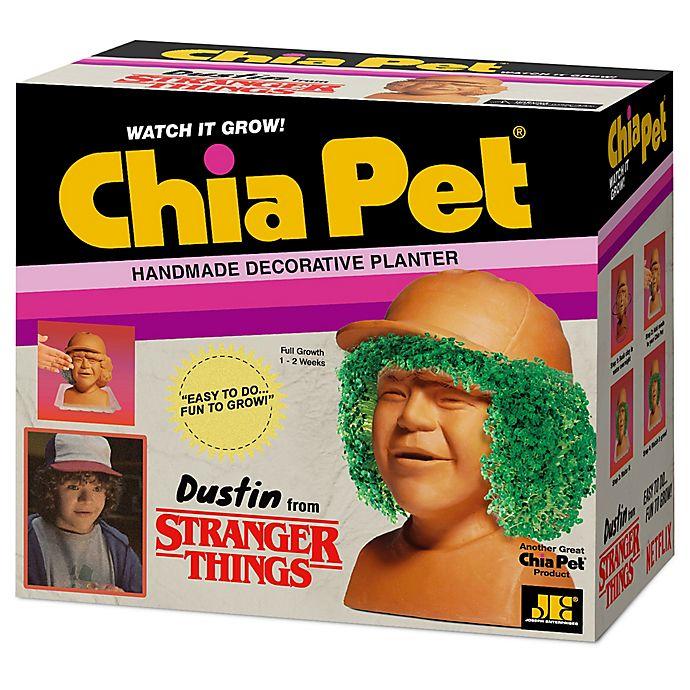 Alternate image 1 for Chia Pet® Stranger Things Dustin Decorative Planter