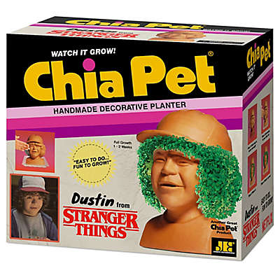 Chia Pet® Stranger Things Dustin Decorative Planter