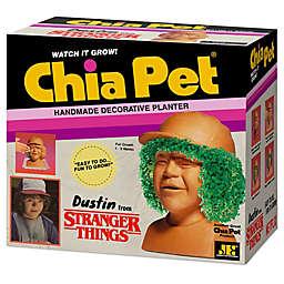 Chia Pet® Stranger Things Dustin Decorative Planter