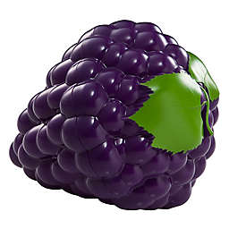 Hutzler® Snack Attach Grapes-to-Go