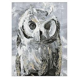 Owl Canvas Wall Art