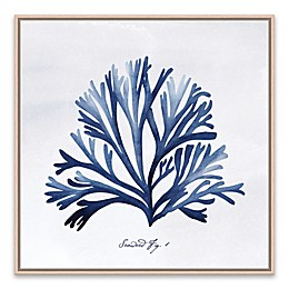 """Seaweed Fig. 1"" 18.88-Inch Square Framed Wall Art"