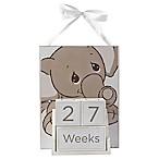 Precious Moments® 4-Piece Baby Elephant Milestone Block Set and Wall Art