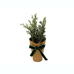 Bee & Willow™ Home Kraft Wrapped Greenery
