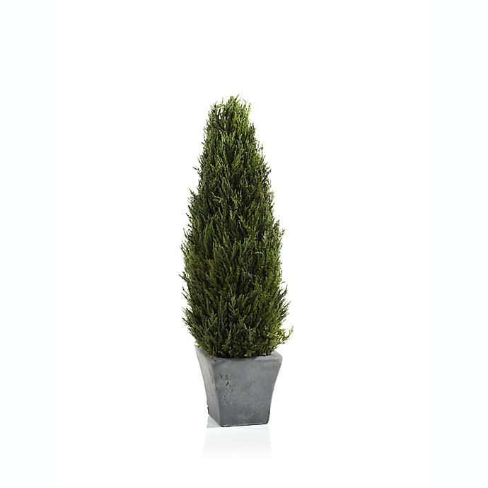 Alternate image 1 for Bee & Willow™ Home 20-Inch Cypress Tree