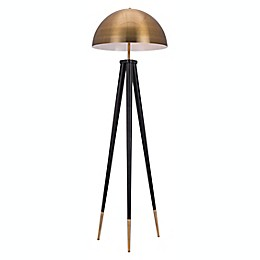 Mascot 2-Light Floor Lamp in Brass/Black