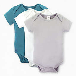 Colored Organics 3-Pack Short Sleeve Organic Cotton Bodysuits in Storm