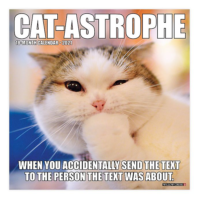 Alternate image 1 for Catastrophe 2021 18-Month Wall Calendar