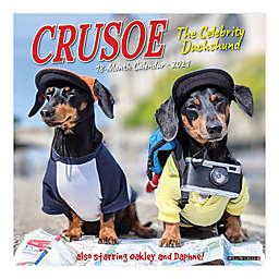 Crusoe the Celebrity Daschund 2021 18-Month Wall Calendar