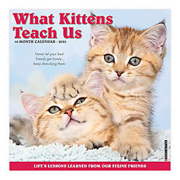 2021 What Kittens Teach Us Wall Calendar