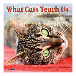 What Cats Teach Us 2021 18-Month Mini Wall Calendar