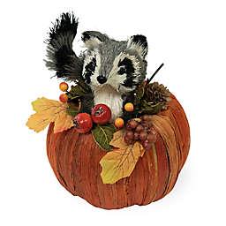 Boston International 6.26-Inch Rudy Raccoon In Pumpkin Decoration
