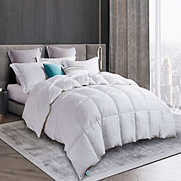 Martha Stewart White Goose Feather and White Goose Down Comforter