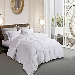 Martha Stewart White Goose Feather and White Goose Down Twin Comforter in White
