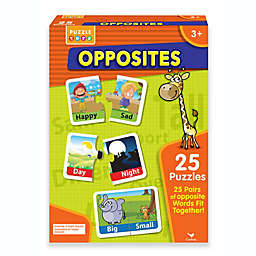 Spin Master® Match and Learn Opposites Game