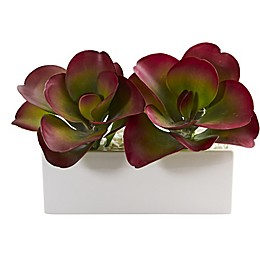 Nearly Natural 11-Inch Artificial Succulent in Planter