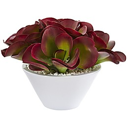 Nearly Natural 13-Inch Artificial Succulent in Planter