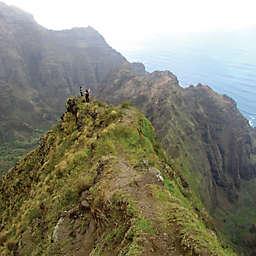 Hawaii Waimea Canyon & Napali Cliff Top Hike Experience by Spur Experiences®
