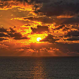 Cayman Island Sunset or Starlight Cruise by Spur Experiences®
