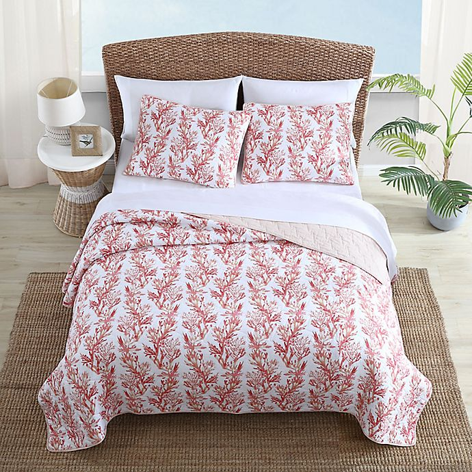 Tommy Bahama Sunset Reef 3 Piece Reversible Quilt Set In Sorbet Bed Bath Beyond