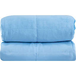 Sealy® 6 lb. Weighted Blanket in Blue