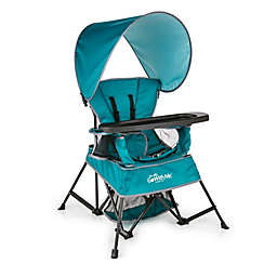 Baby Delight® Go With Me™  Venture Portable Chair in Teal