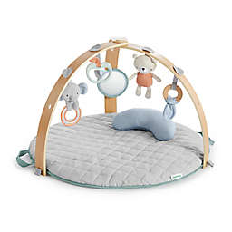 Ingenuity™ Cozy Spot Reversible Activity Gym