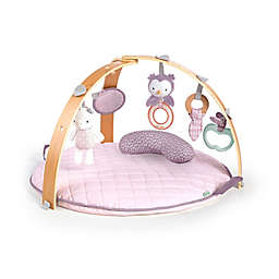 Ingenuity™ Cozy Spot Reversible Activity Gym in Calla