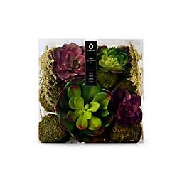 Vunder™ 8-Inch Decorative Filler Succulent in Natural