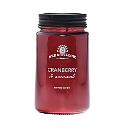 Bee & Willow™ Home Cranberry and Currant Mason Jar Candle