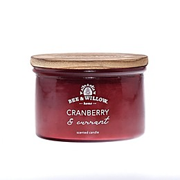 Bee & Willow™ Home Cranberry and Currant Dish Candle