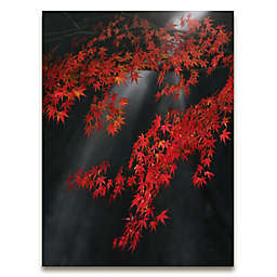 Autumn Leaves Gallery Canvas Wall Art