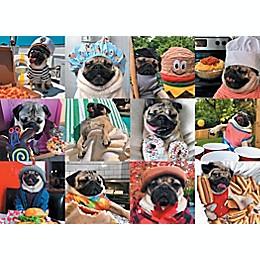 Willow Creek Press® 1000-Piece Doug the Pug Pug Life Puzzle