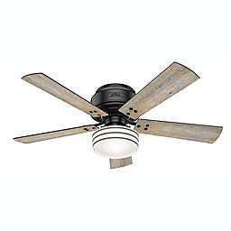 Hunter® 52-Inch Cedar Key Low Profile Indoor/Outdoor Ceiling Fan in Black with Remote Control