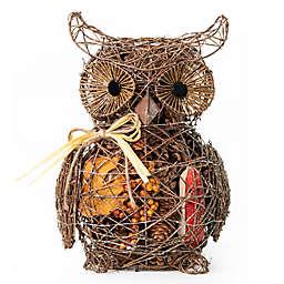 Nature's Inspirations Barn Owl Potpourri