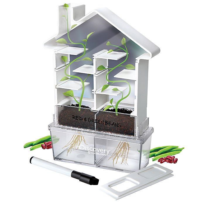 Alternate image 1 for Discovery™ MINDBLOWN Kids DIY Maze Planter