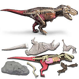 Discovery™ MINDBLOWN Toy Anatomy T-Rex 28-Piece Playset