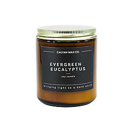 Calyan Wax Co. Evergreen + Eucalyptus Jar Soy Candle in Amber Brown