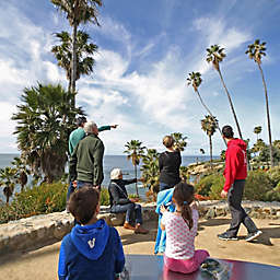 Art and History Walk In Laguna Beach by Spur Experiences®