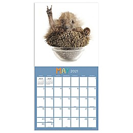 TF Publishing 2021 Happy Hedgehogs Wall Calendar