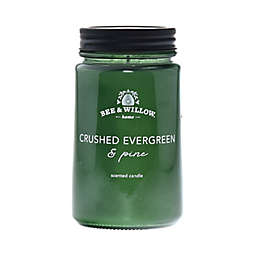 Bee & Willow™ Home Crushed Evergreen and Pine 14 oz. Mason Jar Candle