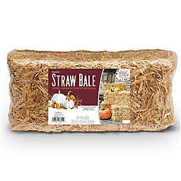 FloraCraft® Decorative Sun-Bleached Straw Bale in Natural