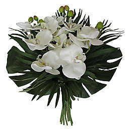 W Home 17-Inch Phalaenopsis Orchid Bouquet in White