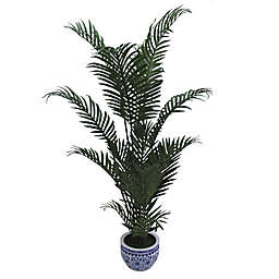 W Home 60-Inch Areca Palm in Ceramic Pot
